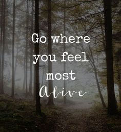 #alive #feel #motto Lilly