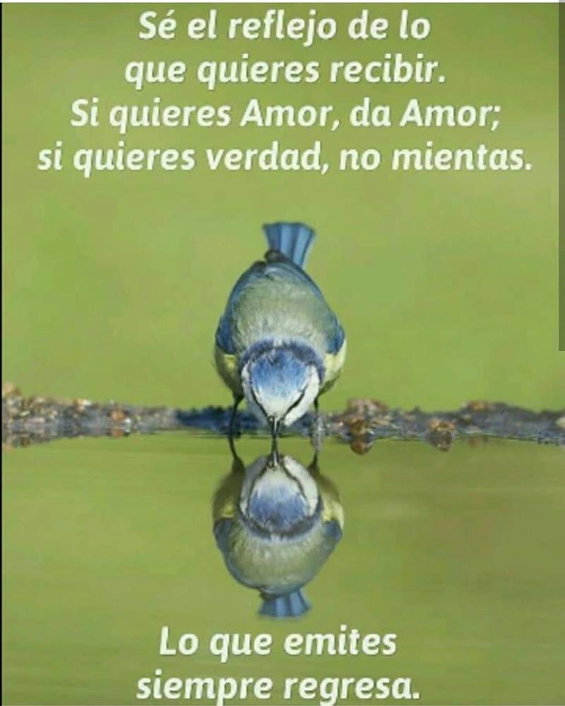 #reflejo #recebir #amor Sé el reflejo
