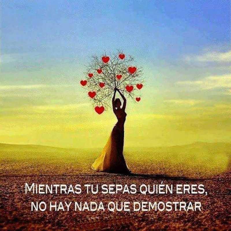 #Mientras #sepas #quién Mientras tú sepas quién eres...