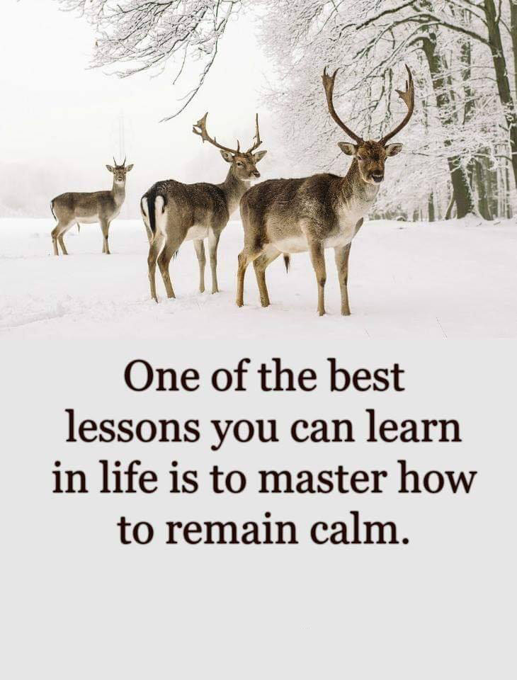 #lesson #learn #best Best lesson you can learn