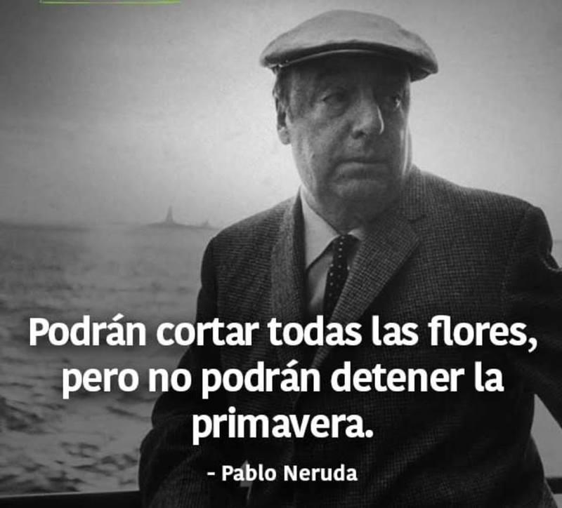 #Podrán #cortar #flores Podrán cortar todas las flores...