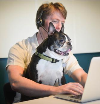 People, Person, Laptop, Electronics, Doctor, Boston Bull, Mammal, Bulldog, Canine, Pet, Computer Keyboard