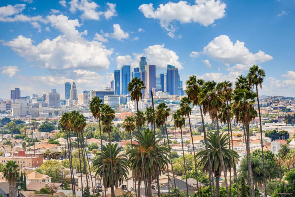 Plant, Building, Outdoors, Urban, City, Tree, Palm Tree, Summer, Metropolis, Architecture