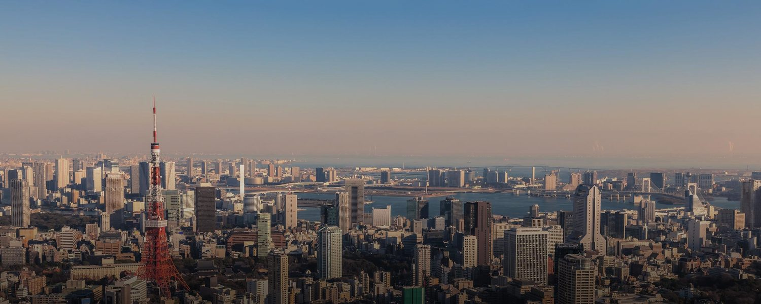 Landscape, Outdoors, Nature, Scenery, Aerial View, Urban, City, Town, Building, Metropolis