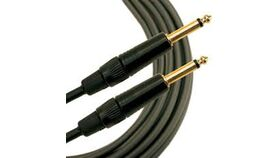 Image of a 10' Quarter Inch Cable