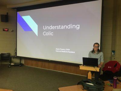 Understanding colic