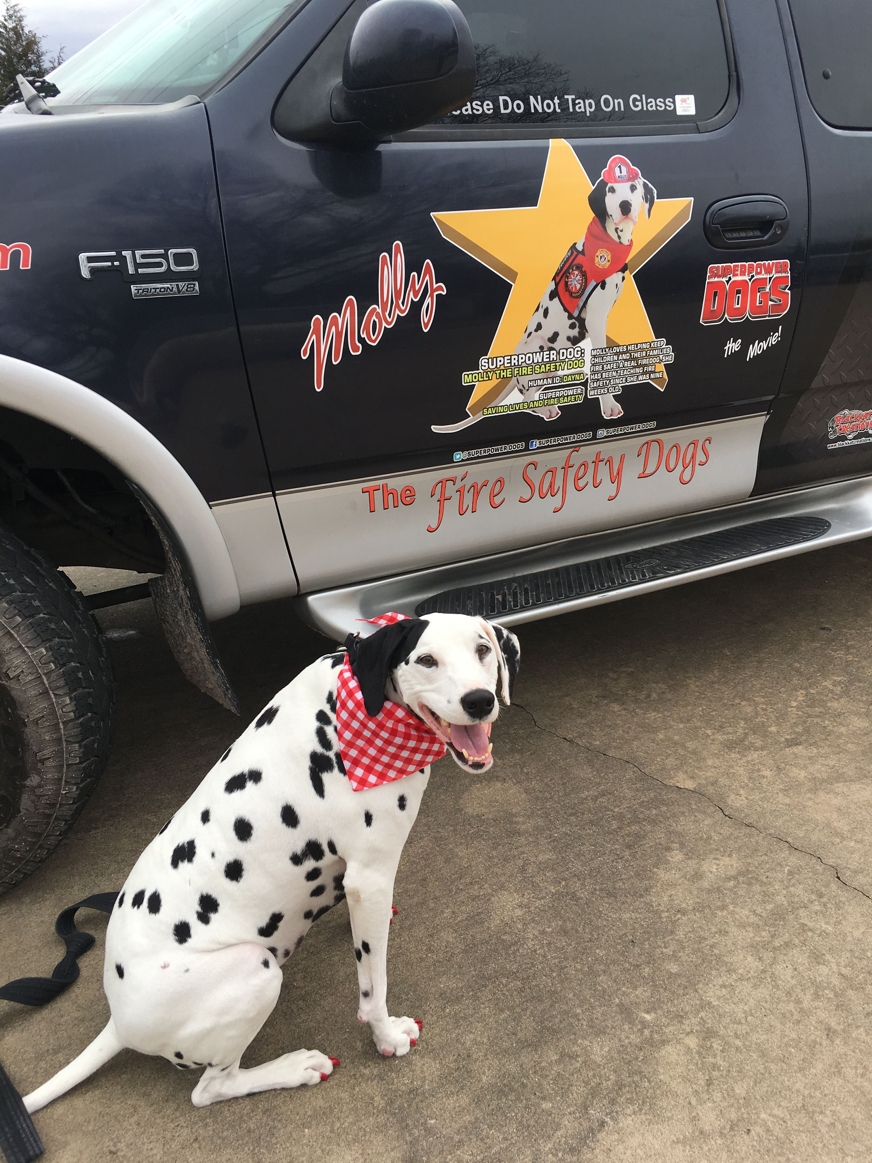 Fire Safety Training with Molly