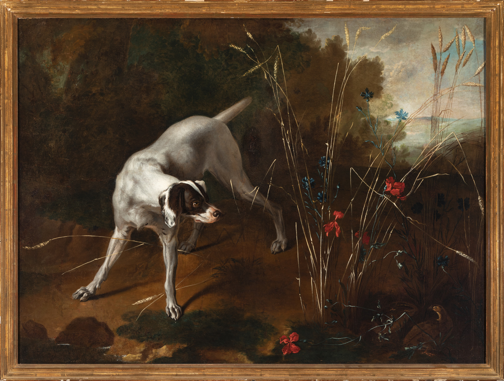 Pointer in a Landscape