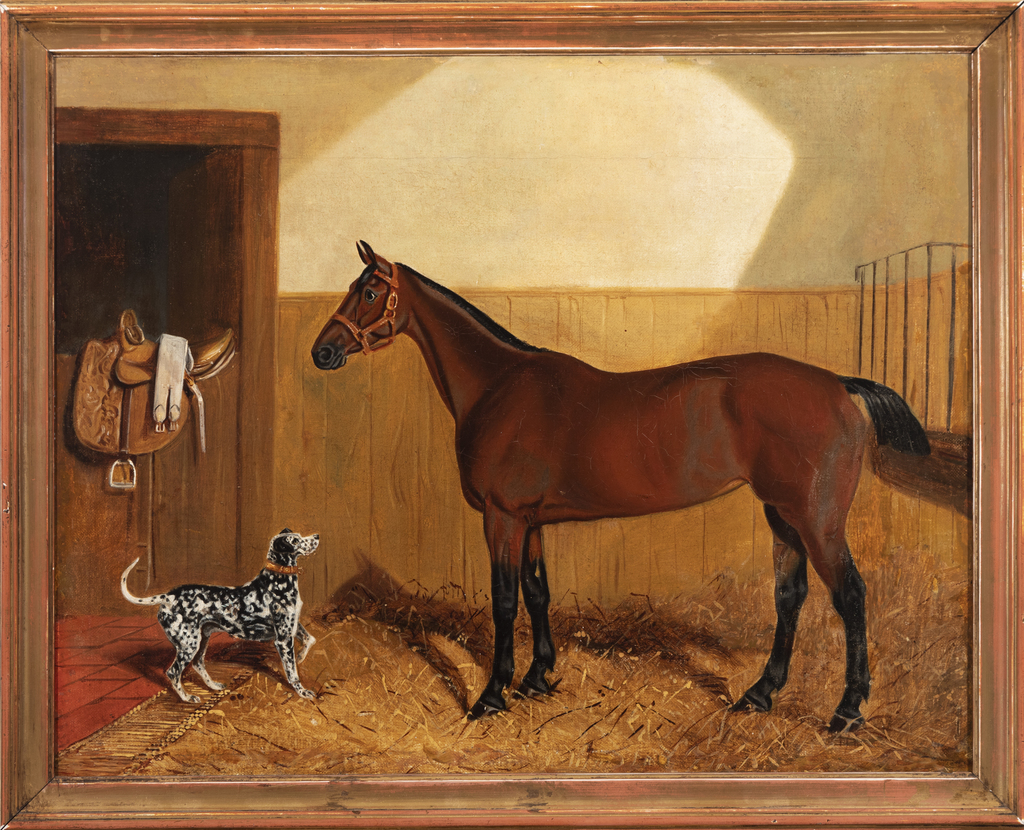 Stable, Dalmatian and Horse
