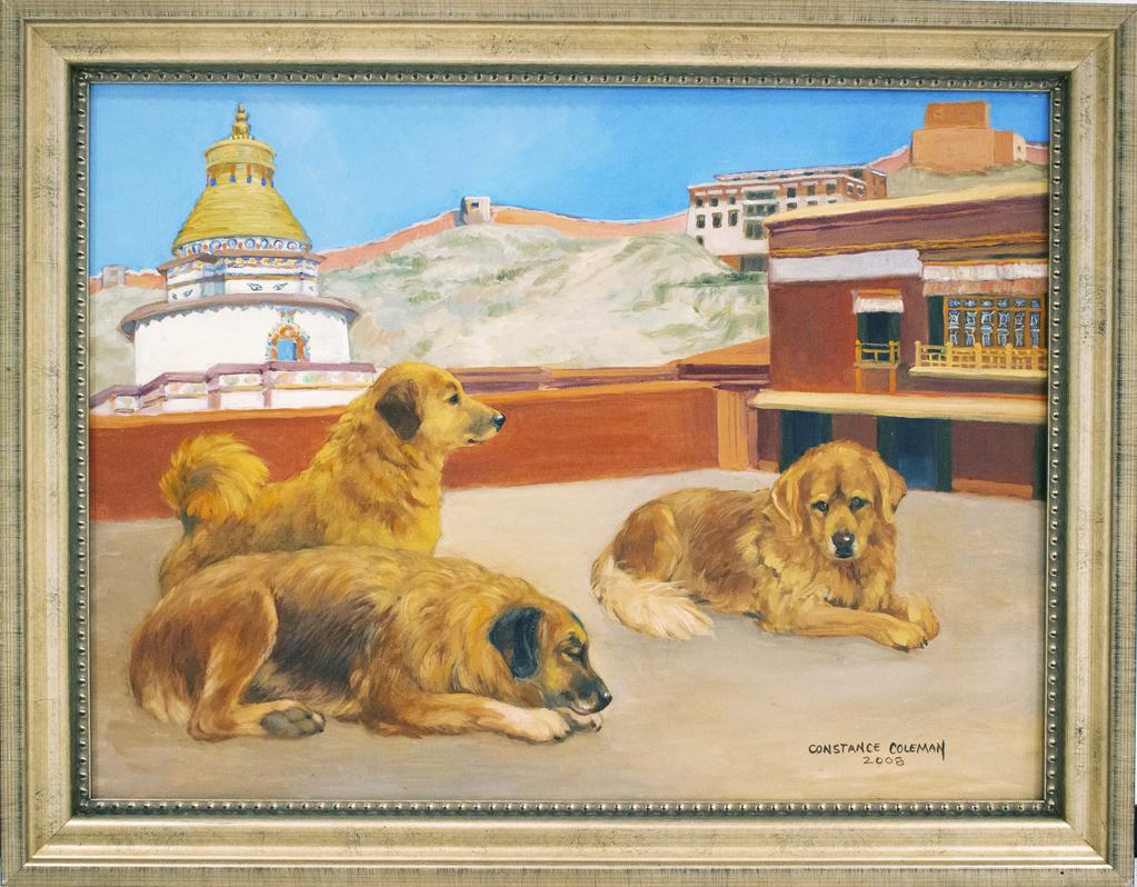 Gyantse-Palko Chode Monastery Dogs
