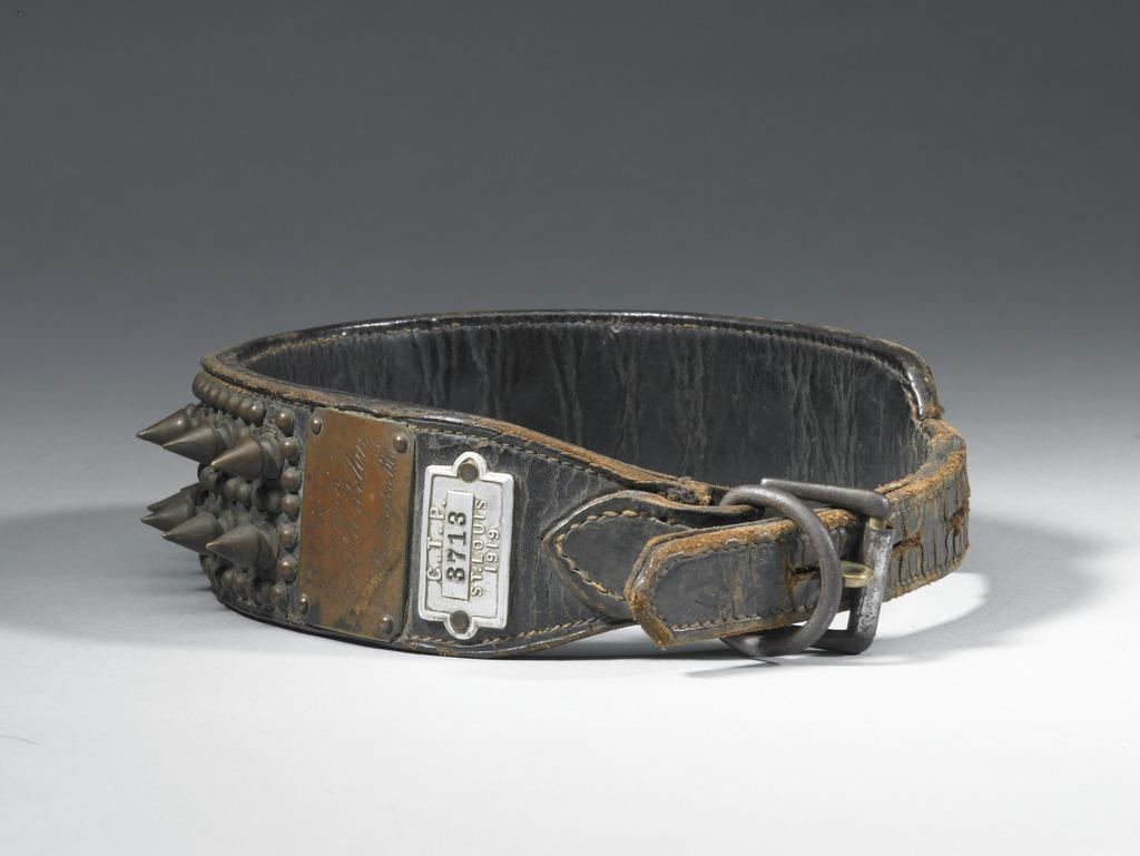 """""""Rowdy"""" Antique Dog Collar"""