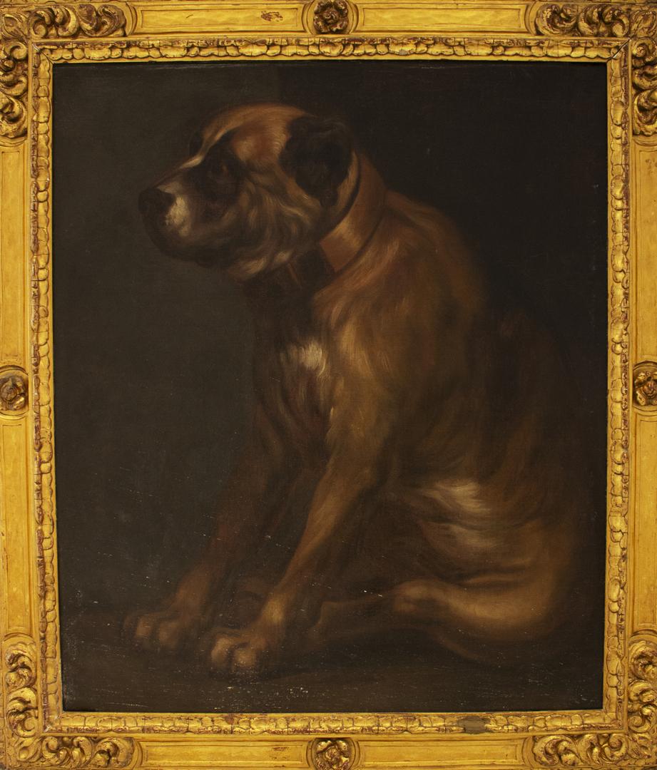Mastiff of King Charles I (England)
