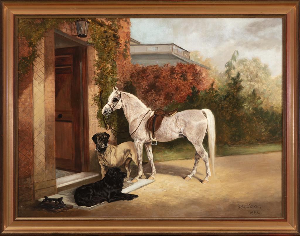 Pony, Mastiff & Newf