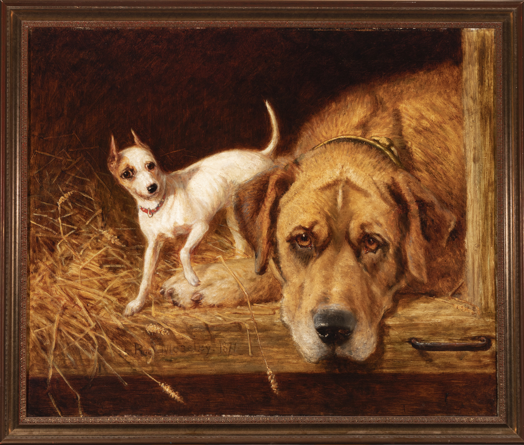 Mastiff and Toy Terrier