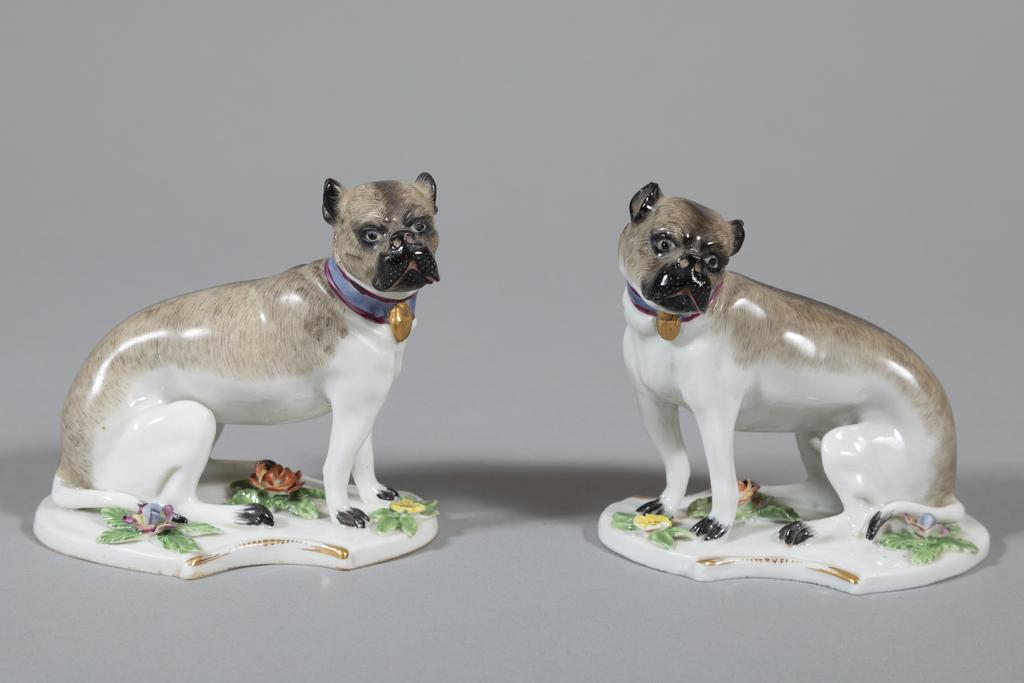 Pug or Bulldog (2 of 2)