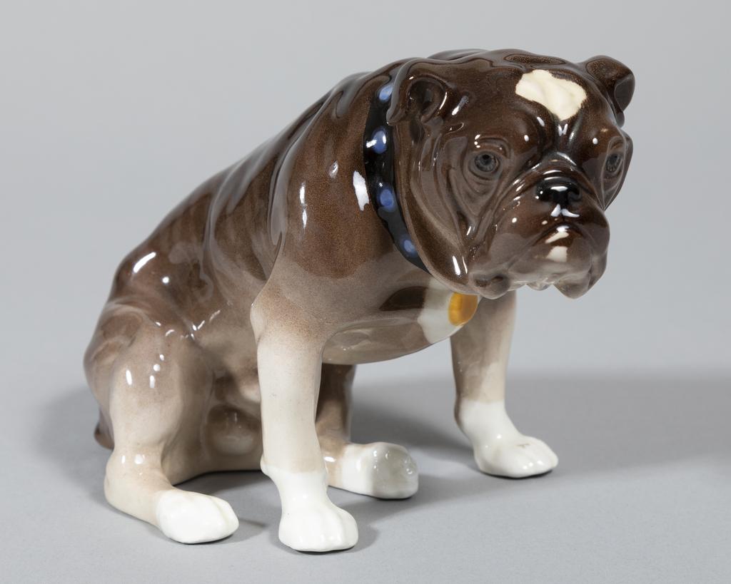 Brindle seated Bulldog w/blue collar