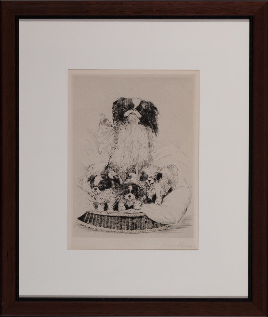 Pekingese with puppies