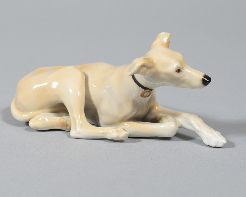 Reclining Whippet - fawn