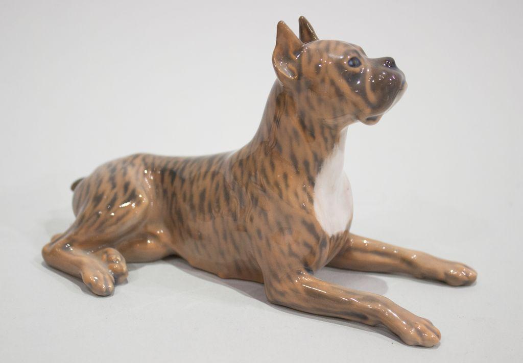 Am. Staffordshire Terrier