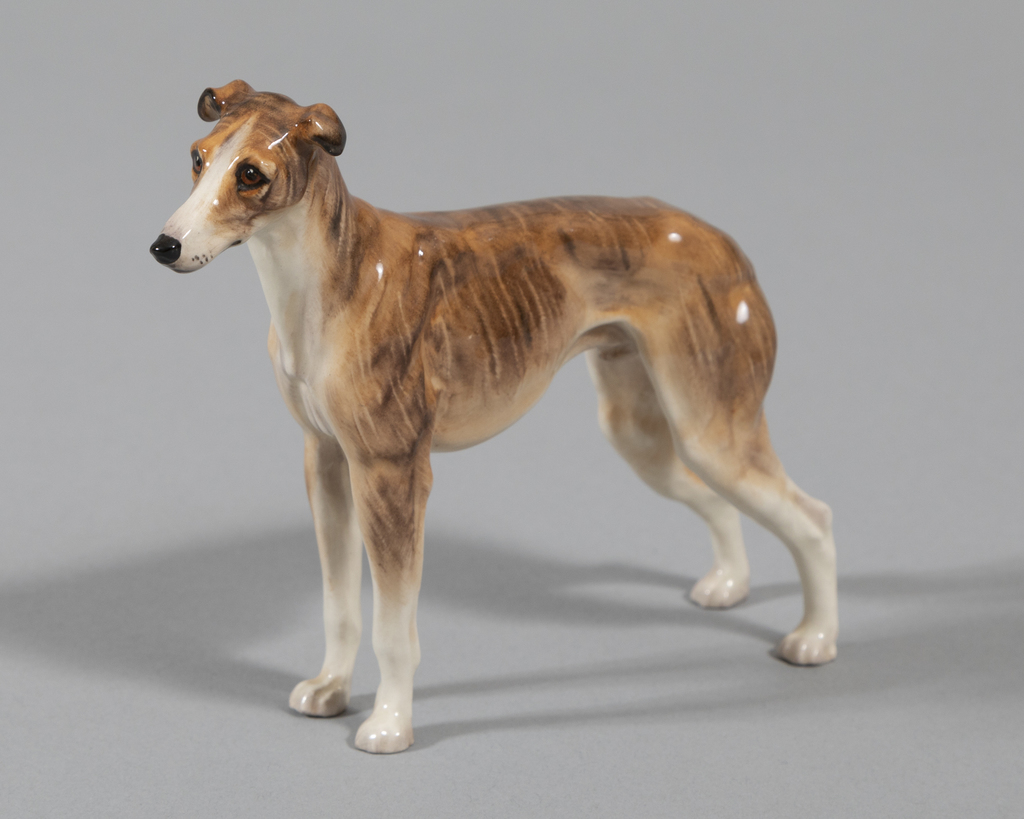 Greyhound- brown brindle