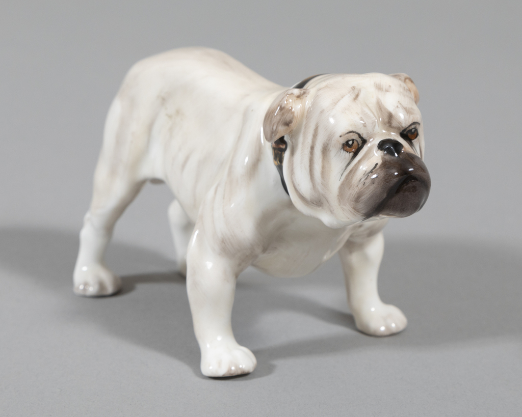 English Bulldog- wht