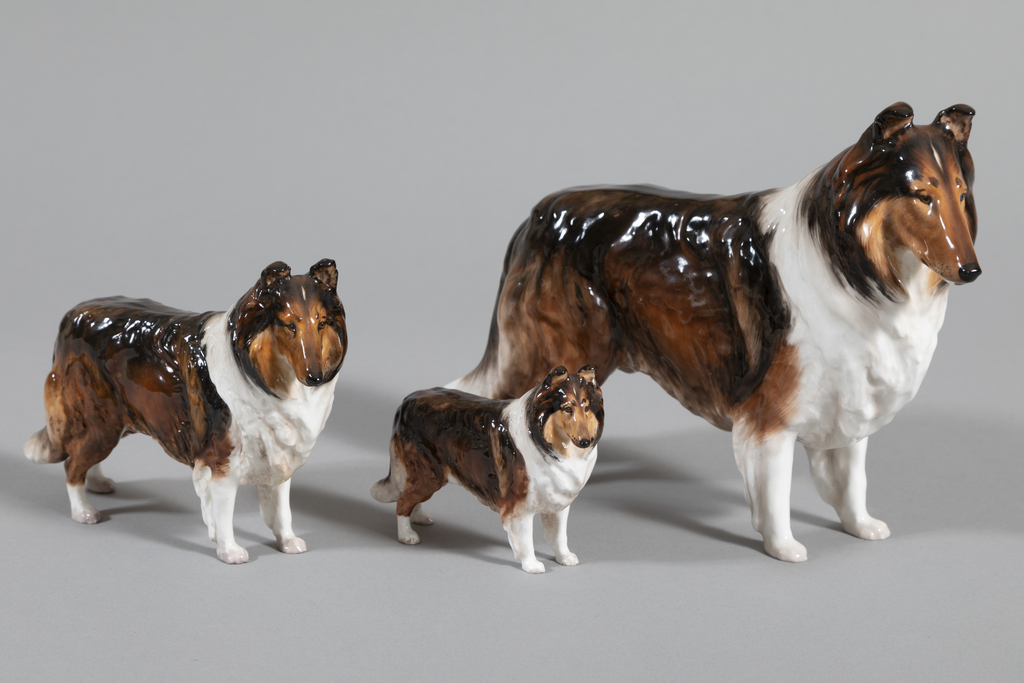 Ch. Ashstead Applause, 3 medium collies