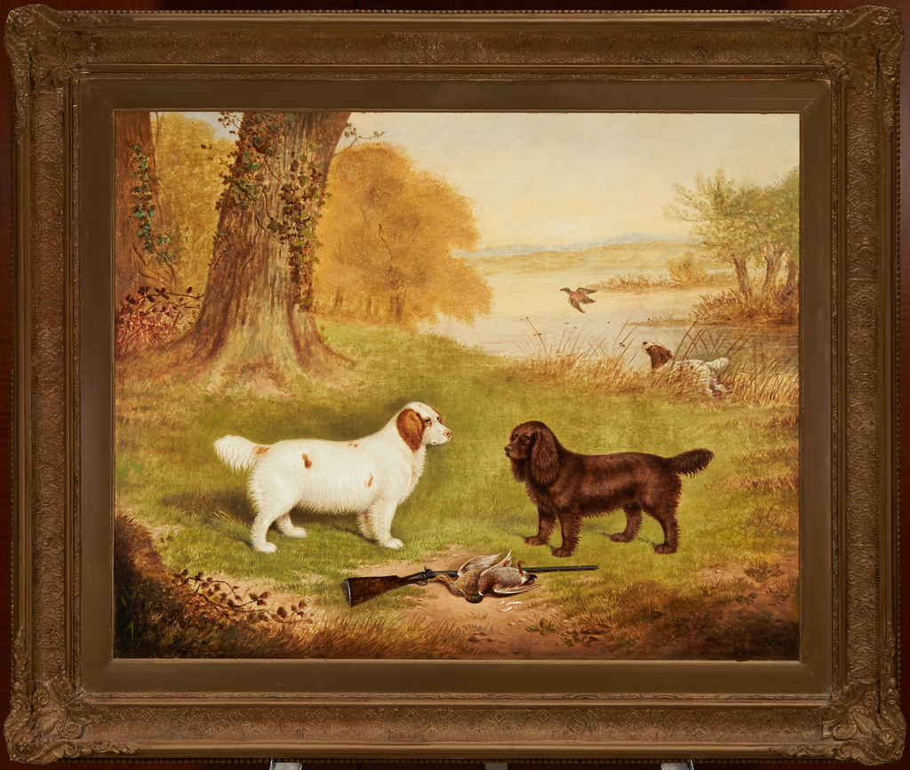 Clumber and Field Spaniel