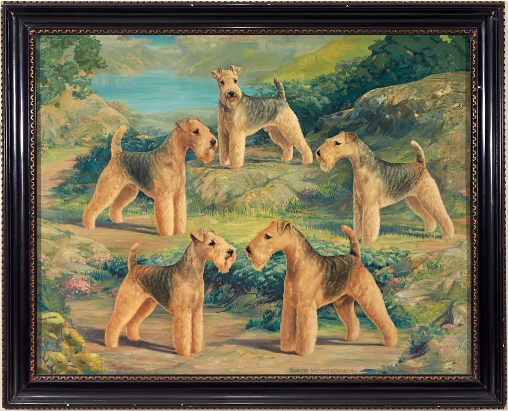 Five Lakeland Terriers