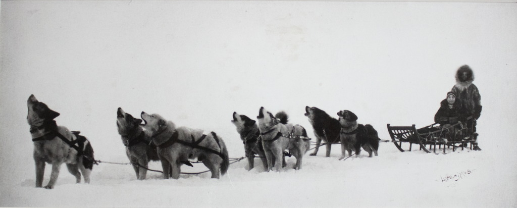 Mush! A Tribute to Sled Dogs from Arctic Exploration to the Iditarod