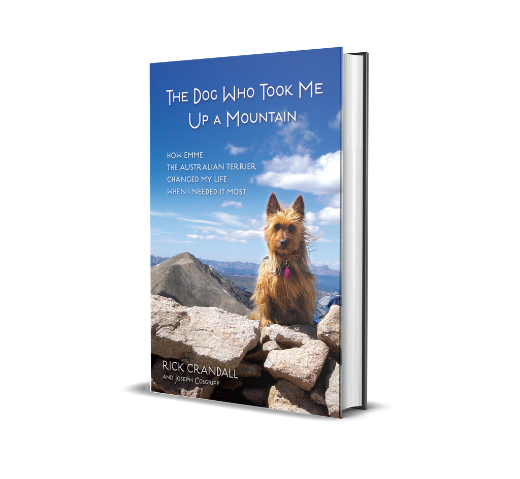 In The Author's Corner: The Dog Who Took Me Up A Mountain