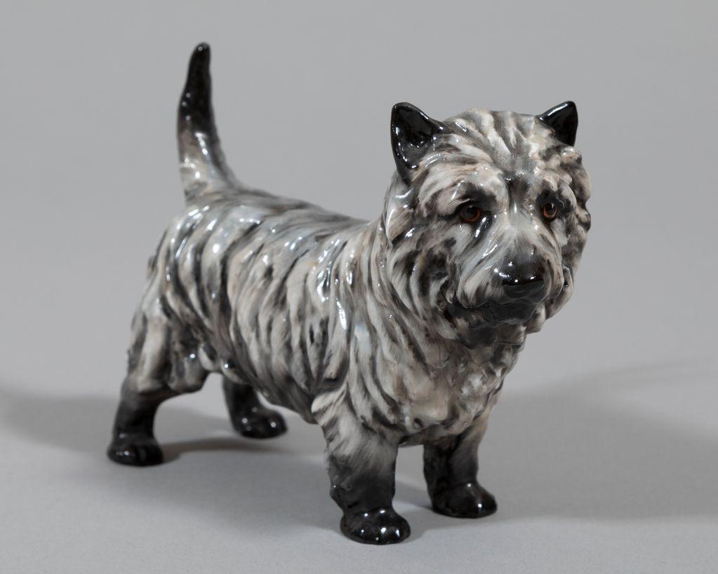 Meet the Breeds®: Cairn Terrier