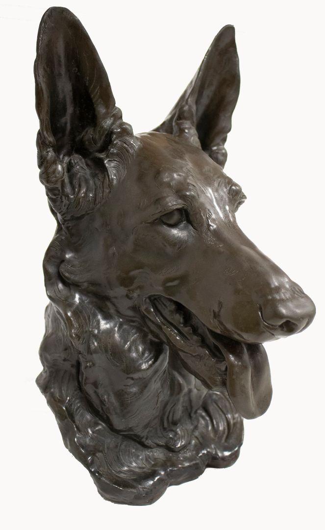 Meet the Breeds®: German Shepherd