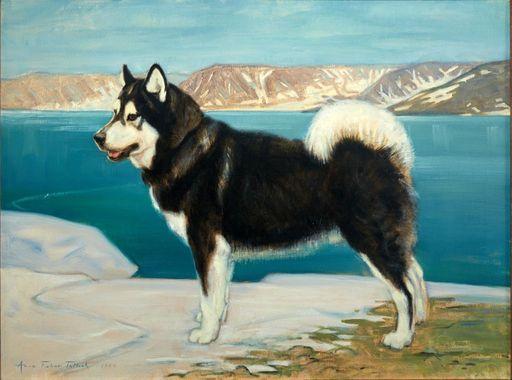 Mush! A Talk with Iditarod Teacher on the Trail