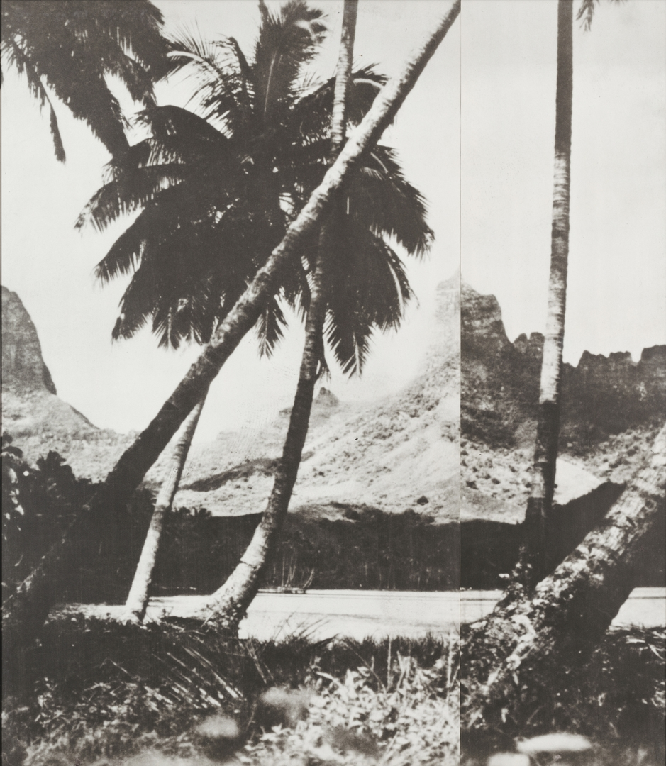 John Baldessari, Palm Trees, 1988