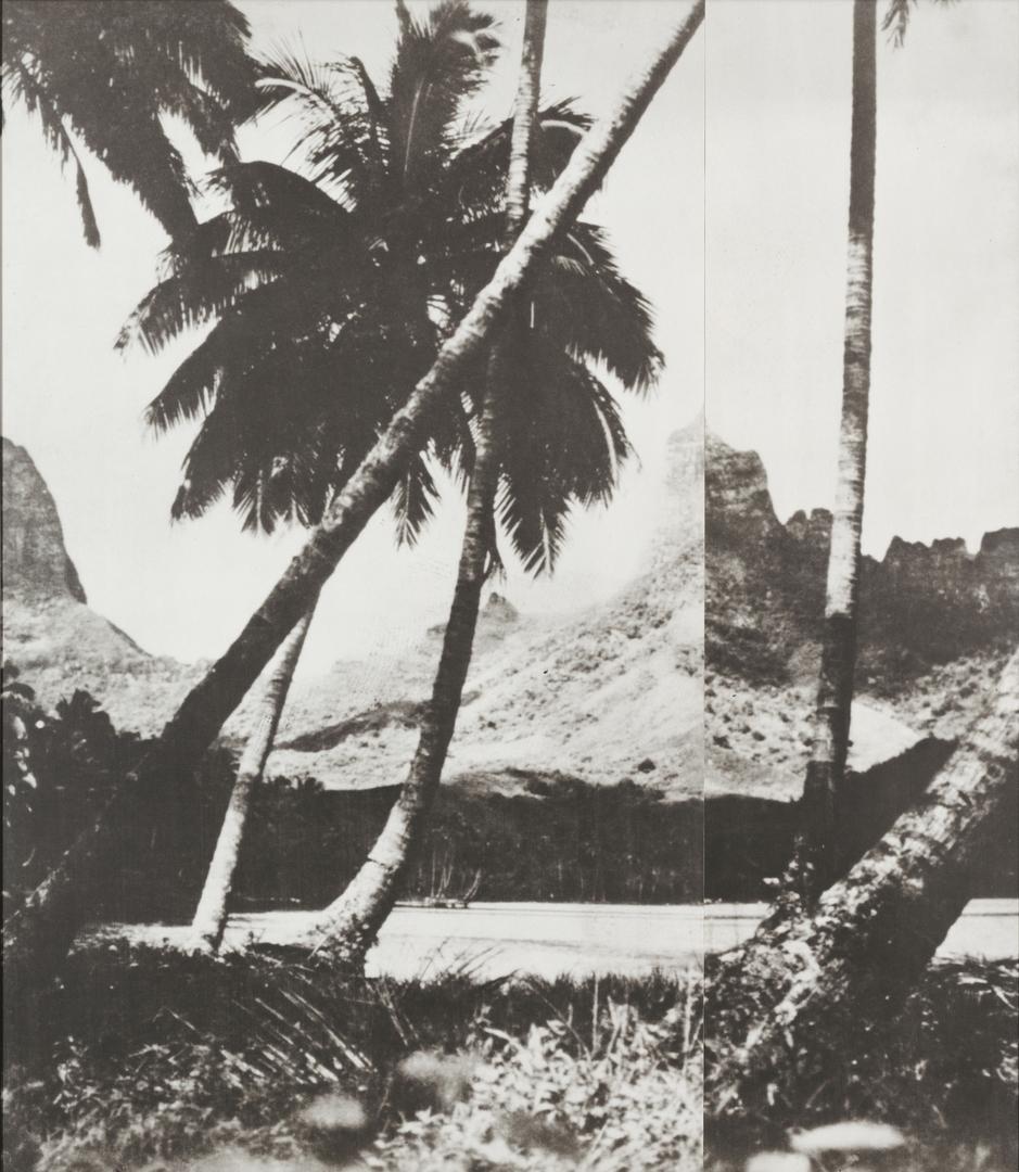 John Baldessari, Palm Trees, 1988